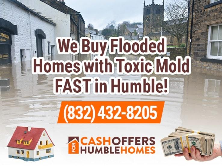 humble water damage and mold
